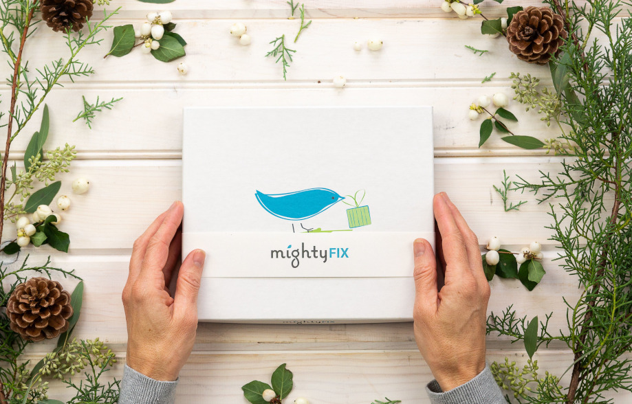 The MightyFix box